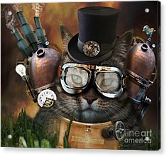 Steampunk Cat Acrylic Print by Juli Scalzi