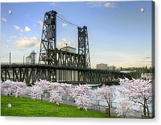 Steel Bridge And Cherry Blossom Trees In Portland Oregon Acrylic Print