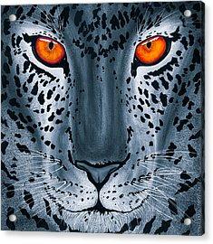 Steel Leopard Acrylic Print