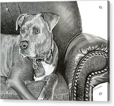 Leather And Steel Acrylic Print