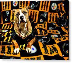 Pitbull Rescue Dog Football Fanatic Acrylic Print