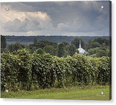 Steeple In The Vines Acrylic Print