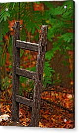 Step Down Acrylic Print