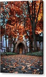 Autumn In Basel Acrylic Print by Carol Japp
