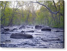 Stepping Stones Acrylic Print by Bill Cannon