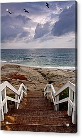 Steps And Pelicans Acrylic Print by Peter Tellone
