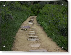 Steps Through Nature Acrylic Print by Missy Boone