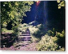 Steps To Madame Sherri Castle Acrylic Print by David Fiske