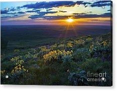 Steptoe Sunset Acrylic Print by Sonya Lang