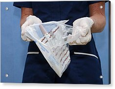 Sterile Urinary Catheter Bag Acrylic Print by Dr P. Marazzi/science Photo Library