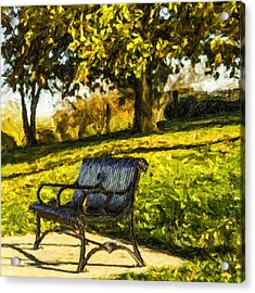 Stevens Lake Park Series 01 Acrylic Print by David Allen Pierson