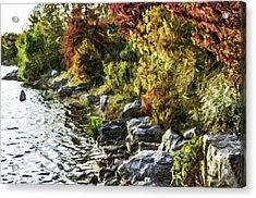 Stevens Lake Park Series 07 Acrylic Print by David Allen Pierson