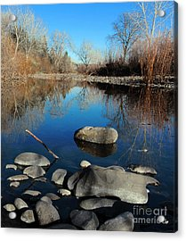 Stick In The Mud Acrylic Print by David Taylor