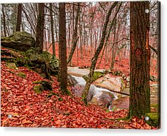 Acrylic Print featuring the photograph Stickney Brook 2 by Jeremy Farnsworth