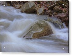 Stickney Brook Rock Acrylic Print by Tom Singleton