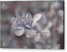 Still I Rise Acrylic Print by Maria Angelica Maira