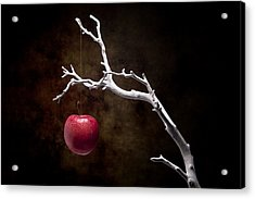 Still Life Apple Tree Acrylic Print by Tom Mc Nemar