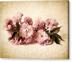 Still Life Blossom Acrylic Print by Jessica Jenney