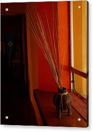 Acrylic Print featuring the photograph Still Life In Baja by Alan Socolik
