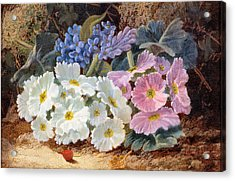 Still Life Of Flowers Acrylic Print by Oliver Clare