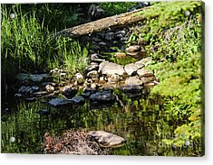 Still Waters 1 Acrylic Print