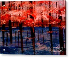 Still Waters Acrylic Print by Lori  Lovetere