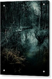 Still Waters Run Deep Acrylic Print by Jessica Brawley