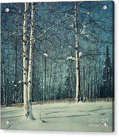 Still Winter Acrylic Print by Priska Wettstein