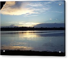 Acrylic Print featuring the photograph Stillness by Michele Kaiser