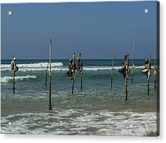 Stilt Fishermen On Beach, Galle Acrylic Print by Panoramic Images
