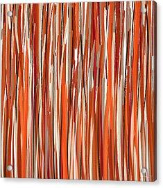 Stimulating Colors Acrylic Print