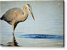 Stirring The Water 2 Acrylic Print