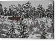 Stockpiled Warmth Acrylic Print by Harry Strharsky