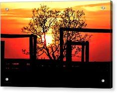 Stockyard Sunset Acrylic Print