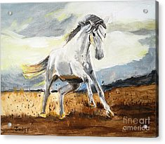 Stomping Ground Acrylic Print by Judy Kay