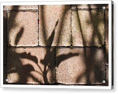Stone And Light 10 Acrylic Print