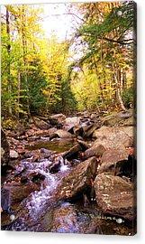 Stone Brook I Acrylic Print