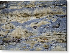 Acrylic Print featuring the photograph Stone Detail by Felicia Tica