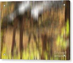 Stone Footbridge Acrylic Print