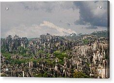 Stone Forest 2 Acrylic Print