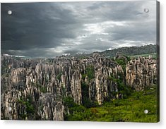 Stone Forest Acrylic Print