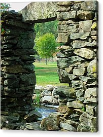 Stone Framed Tree Acrylic Print by Heather Sylvia