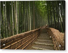 Stone Pathway In Bamboo Forest Acrylic Print by Philippe Widling