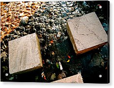 Acrylic Print featuring the photograph Stone Walking by Yen