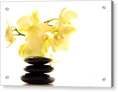 Stones And Orchid Acrylic Print by Olivier Le Queinec