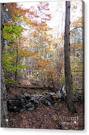 Stonewall In The Woods Acrylic Print by Linda Marcille
