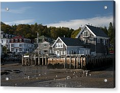 Stonington Harbor Acrylic Print by Paul Miller