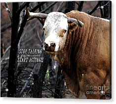 Stop Talking Acrylic Print by Linda Cox