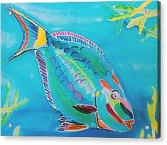 Stoplight Parrot Fish Acrylic Print