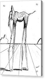 Stork Legs Acrylic Print by Dan Twyman